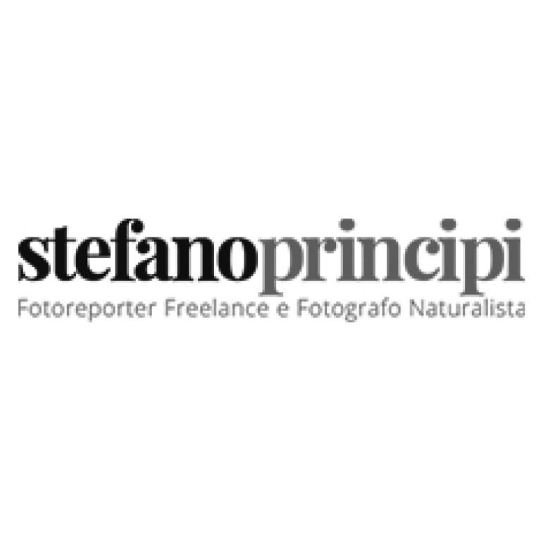 stefano-principi